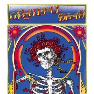 Grateful Dead Skull & Roses