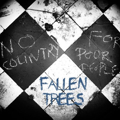 Fallen Trees No Country For Poor People