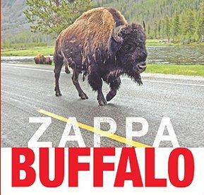 Frank Zappa Buffalo