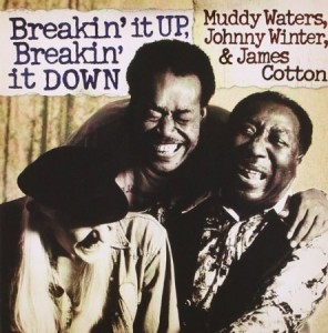 Muddy Waters Breakin It Up Breakin It Down